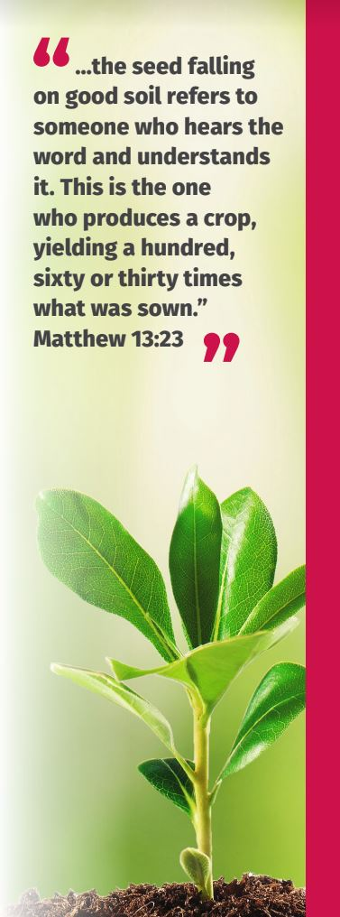 """The seed falling on good soil refers to the one who hears the word and understands it..."" Matthew 13:23"